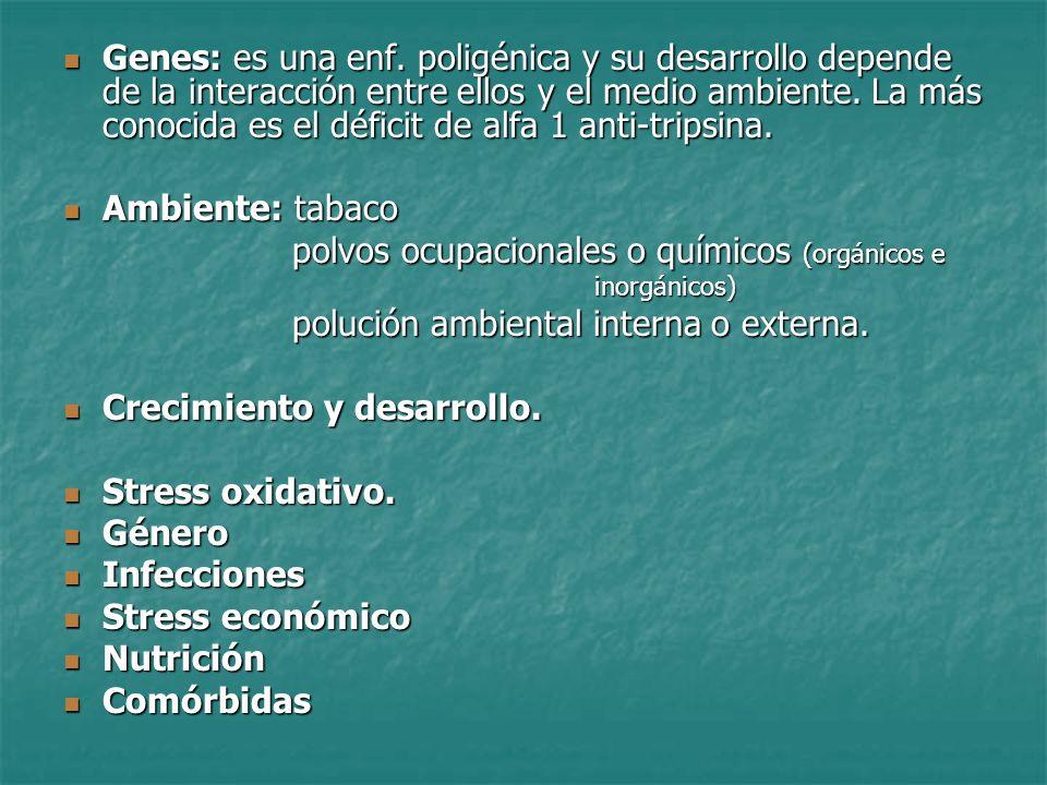 polvos ocupacionales o químicos (orgánicos e