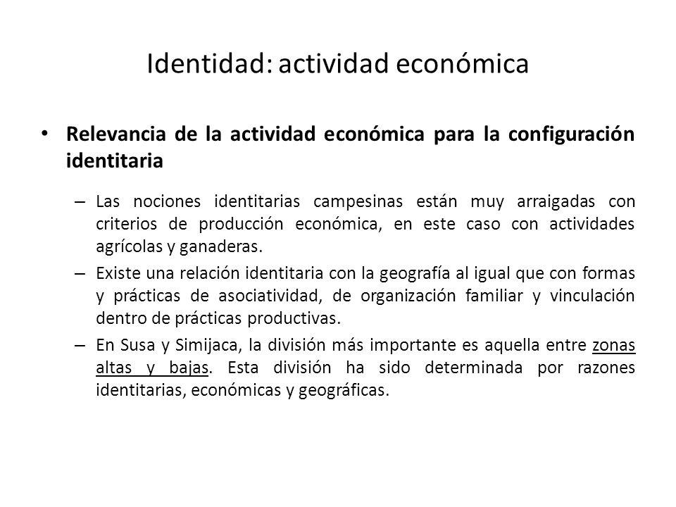 Identidad: actividad económica