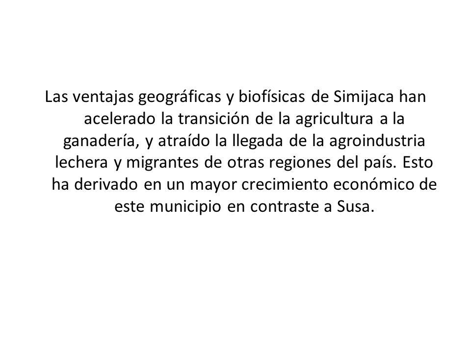 Las ventajas geográficas y biofísicas de Simijaca han acelerado la transición de la agricultura a la ganadería, y atraído la llegada de la agroindustria lechera y migrantes de otras regiones del país.