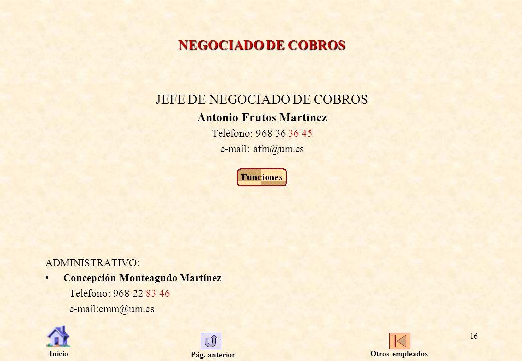 JEFE DE NEGOCIADO DE COBROS