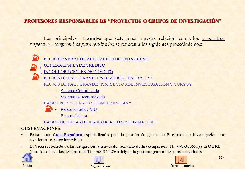 PROFESORES RESPONSABLES DE PROYECTOS O GRUPOS DE INVESTIGACIÓN