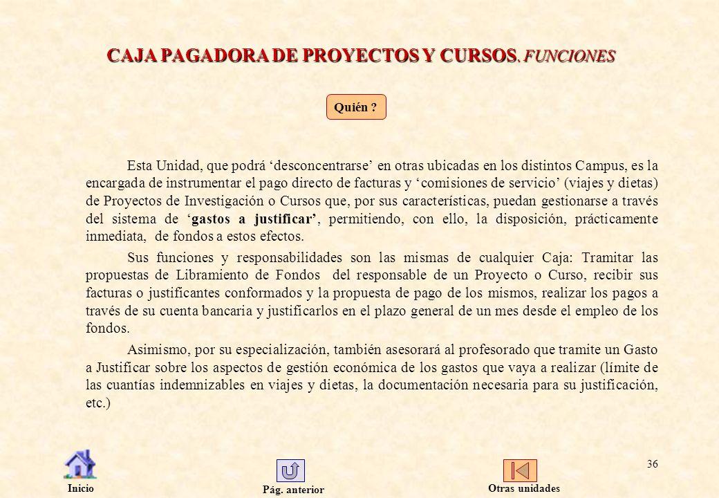 CAJA PAGADORA DE PROYECTOS Y CURSOS. FUNCIONES