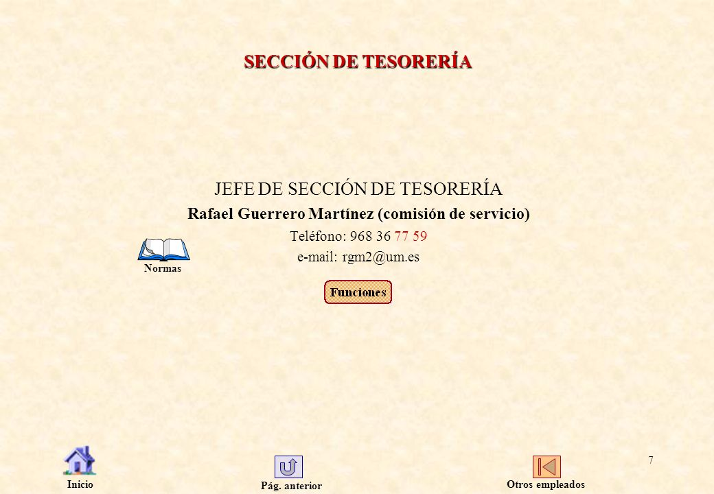 JEFE DE SECCIÓN DE TESORERÍA