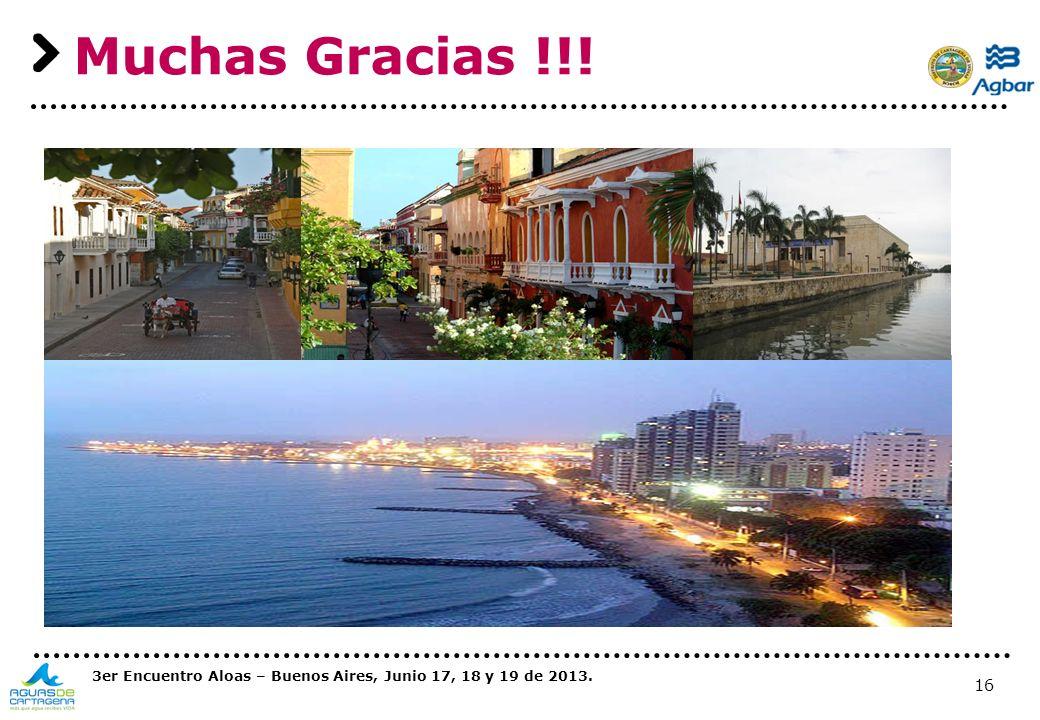 Muchas Gracias !!! 3er Encuentro Aloas – Buenos Aires, Junio 17, 18 y 19 de 2013.