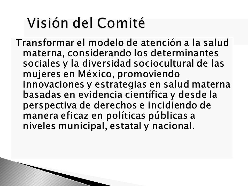 Visión del Comité