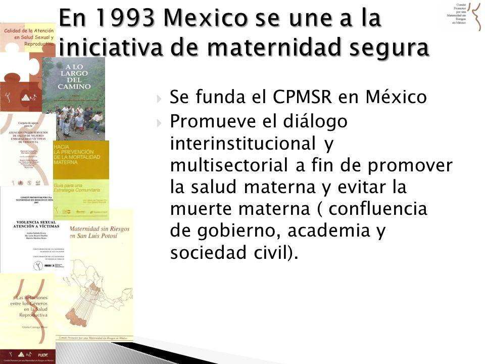 En 1993 Mexico se une a la iniciativa de maternidad segura