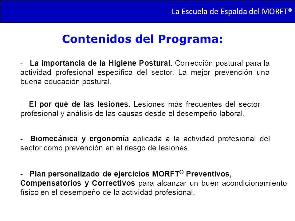 Contenidos del Programa: