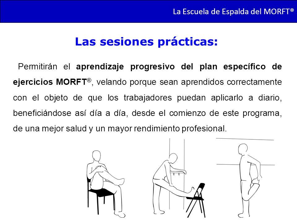 Las sesiones prácticas: