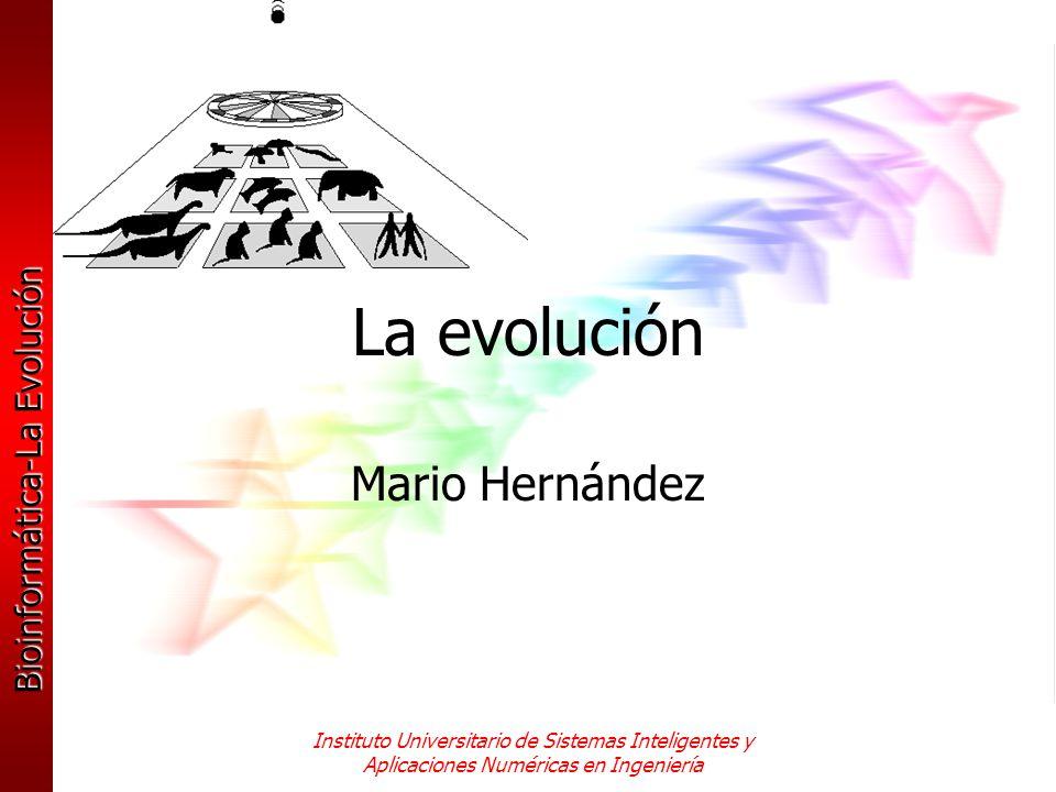 La evolución Mario Hernández