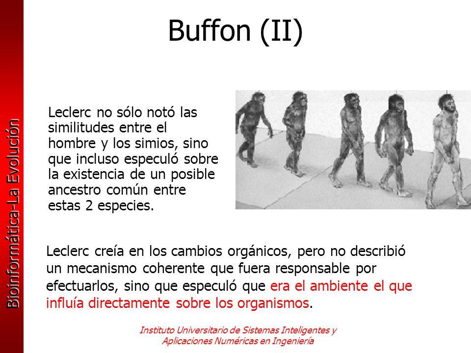Buffon (II)