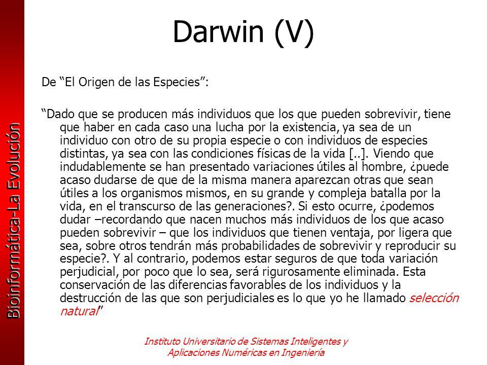 Darwin (V) De El Origen de las Especies :