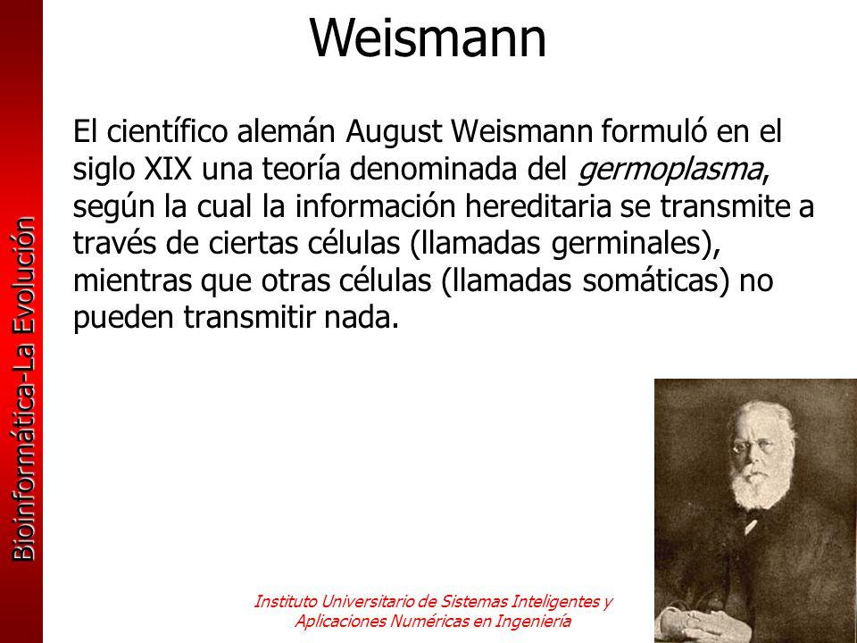 Weismann