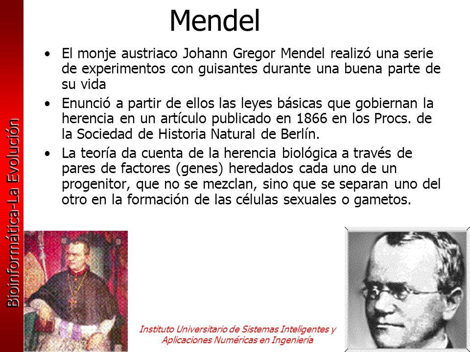 Mendel El monje austriaco Johann Gregor Mendel realizó una serie de experimentos con guisantes durante una buena parte de su vida.