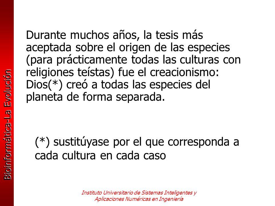 (*) sustitúyase por el que corresponda a cada cultura en cada caso