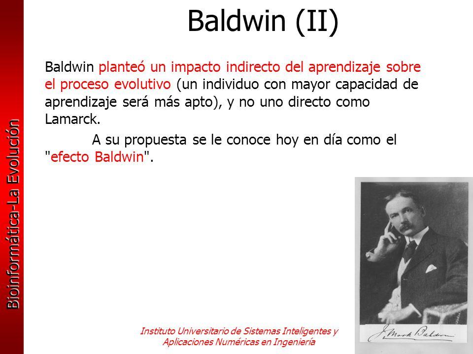Baldwin (II)