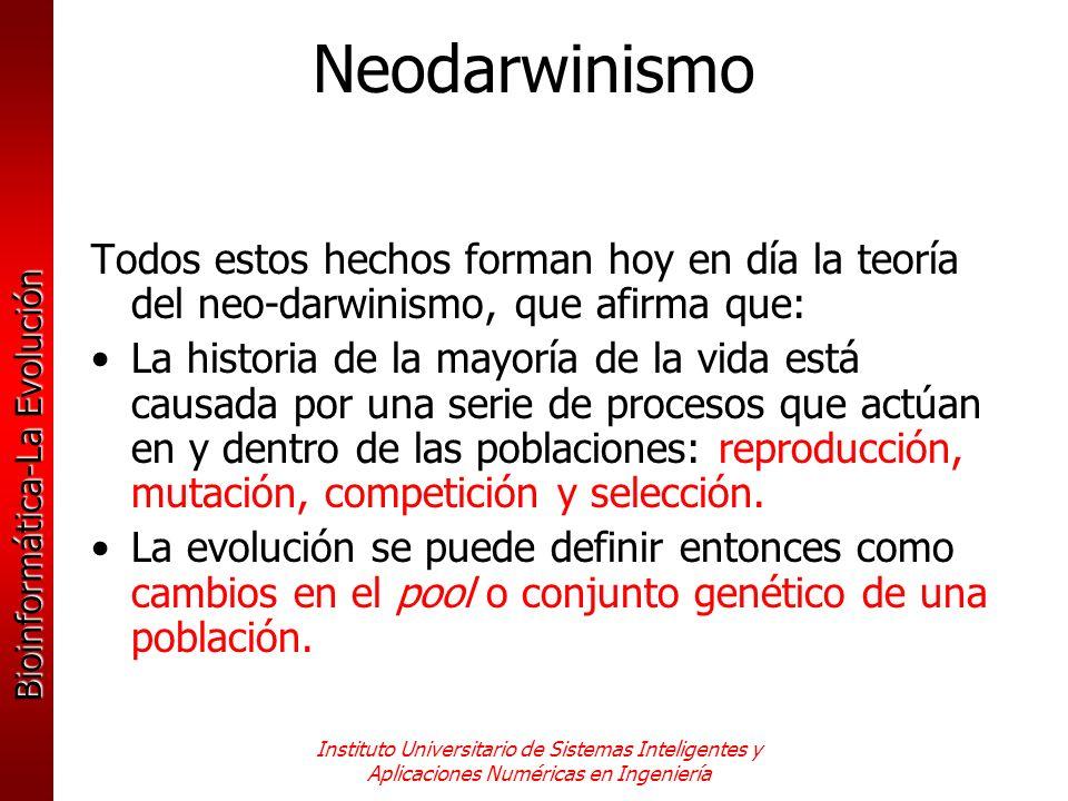 Neodarwinismo Todos estos hechos forman hoy en día la teoría del neo-darwinismo, que afirma que: