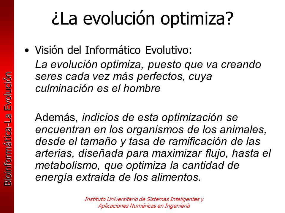 ¿La evolución optimiza