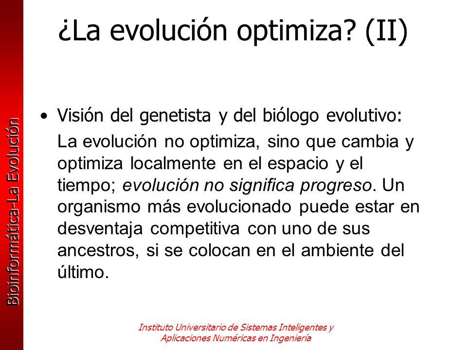 ¿La evolución optimiza (II)