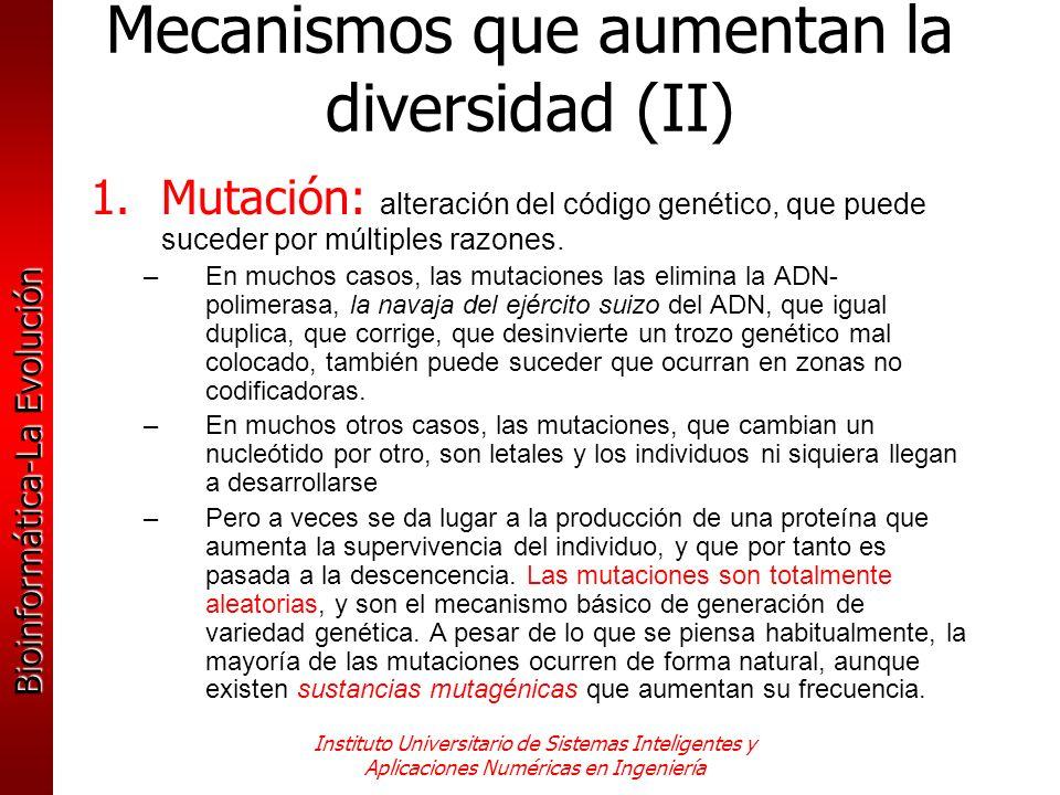 Mecanismos que aumentan la diversidad (II)