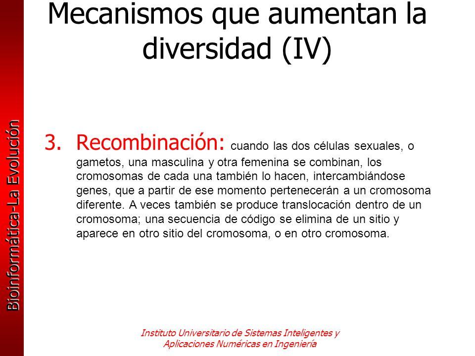 Mecanismos que aumentan la diversidad (IV)