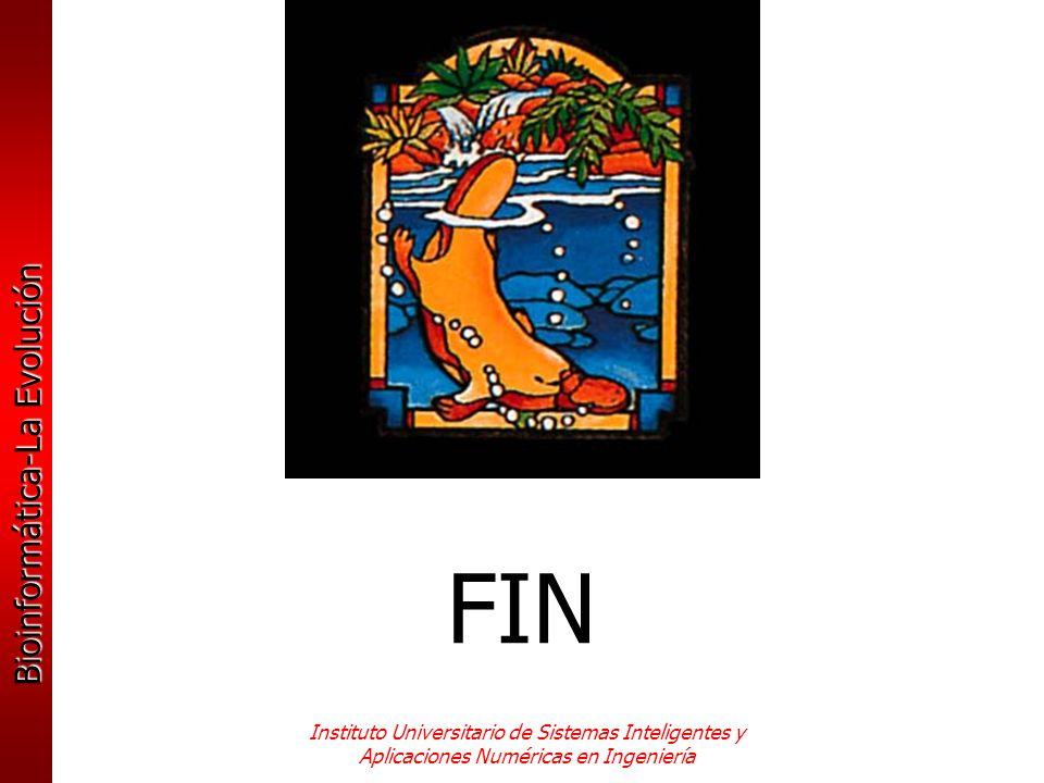 FIN Instituto Universitario de Sistemas Inteligentes y Aplicaciones Numéricas en Ingeniería