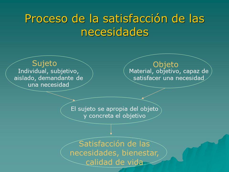 Proceso de la satisfacción de las necesidades