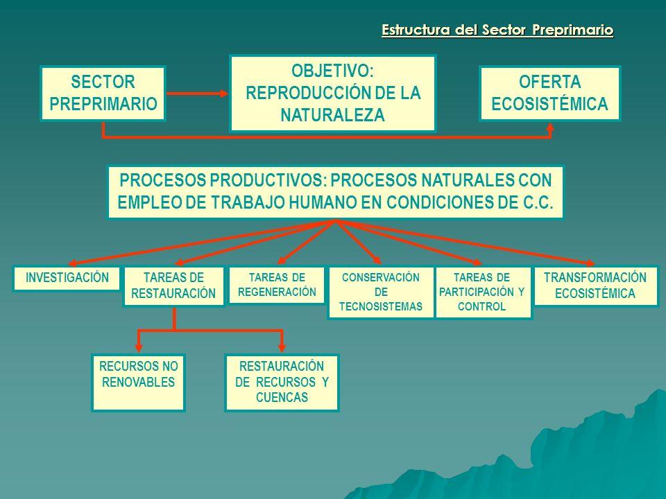 OBJETIVO: REPRODUCCIÓN DE LA NATURALEZA SECTOR PREPRIMARIO