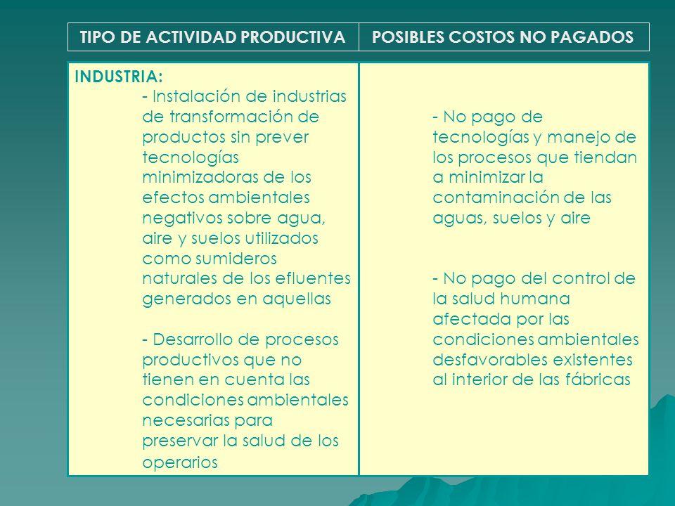 TIPO DE ACTIVIDAD PRODUCTIVA POSIBLES COSTOS NO PAGADOS