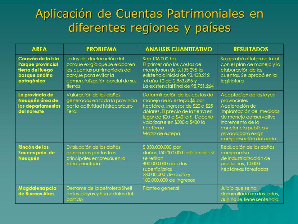 Aplicación de Cuentas Patrimoniales en diferentes regiones y países