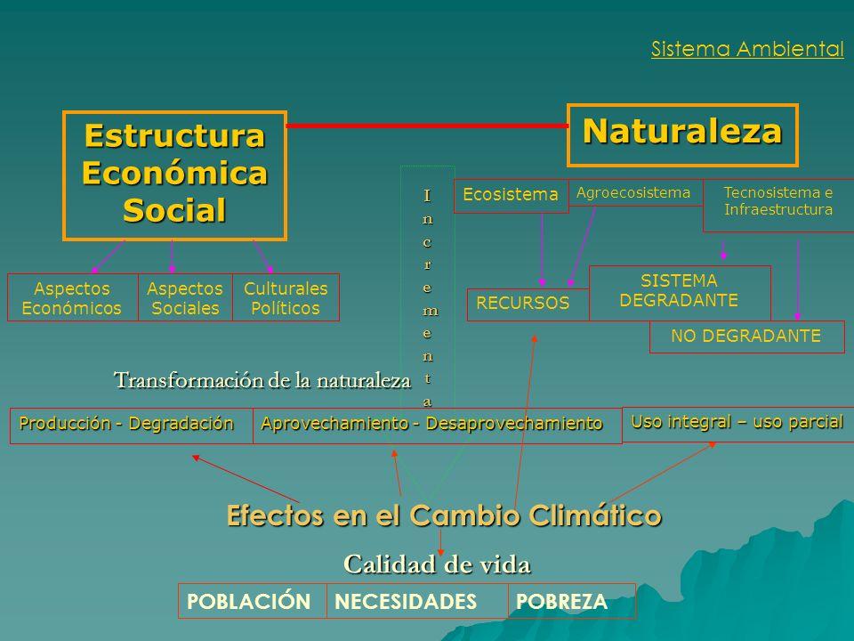 Estructura Económica Social Efectos en el Cambio Climático