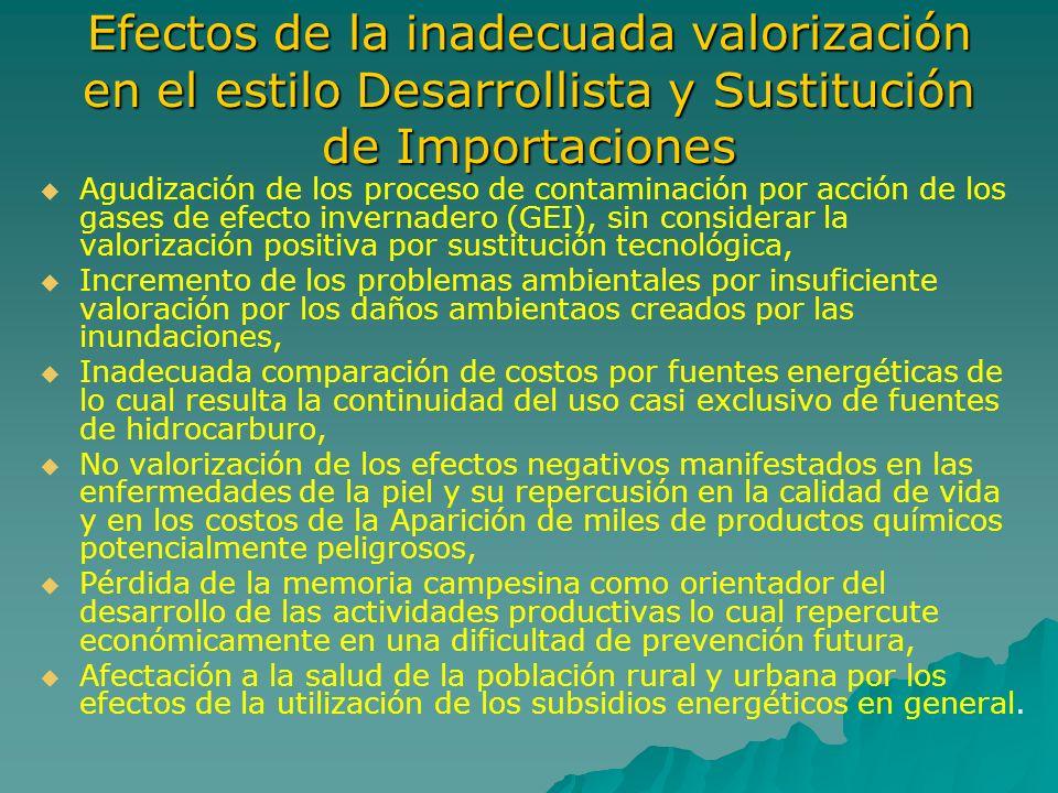 Efectos de la inadecuada valorización en el estilo Desarrollista y Sustitución de Importaciones
