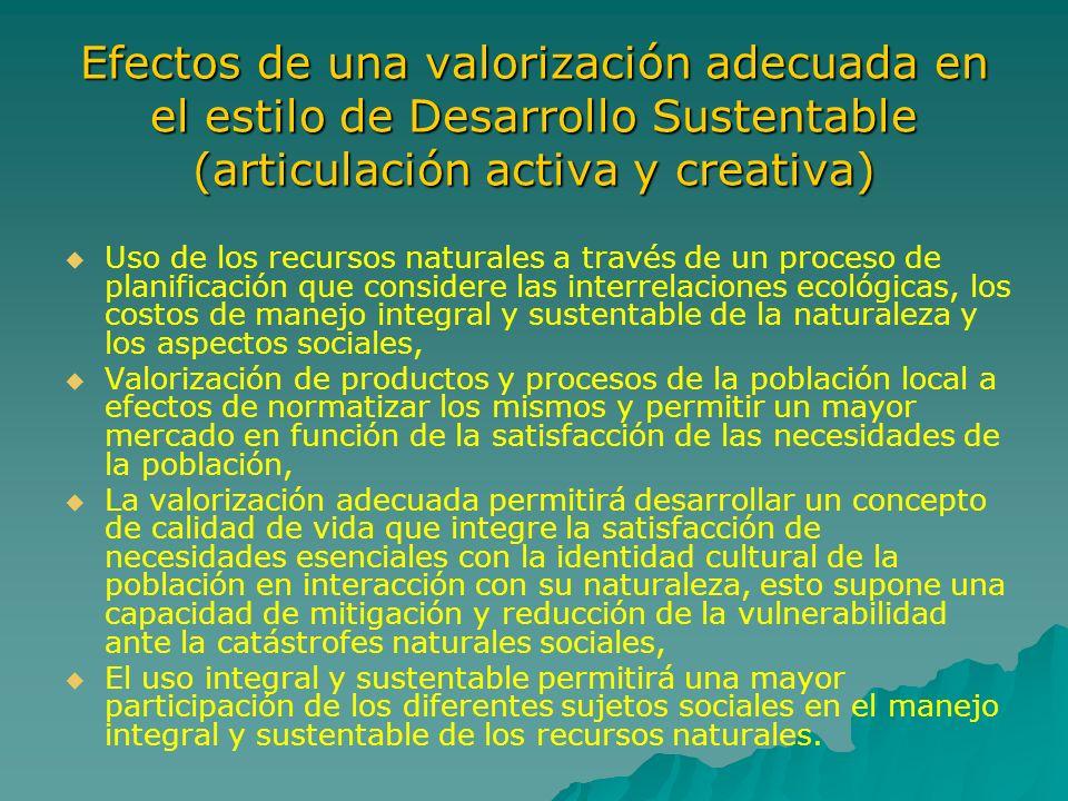 Efectos de una valorización adecuada en el estilo de Desarrollo Sustentable (articulación activa y creativa)