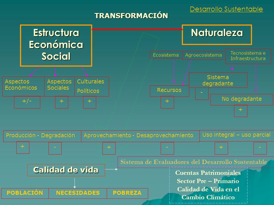 Estructura Económica Social