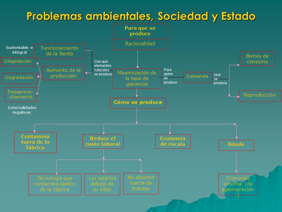 Problemas ambientales, Sociedad y Estado