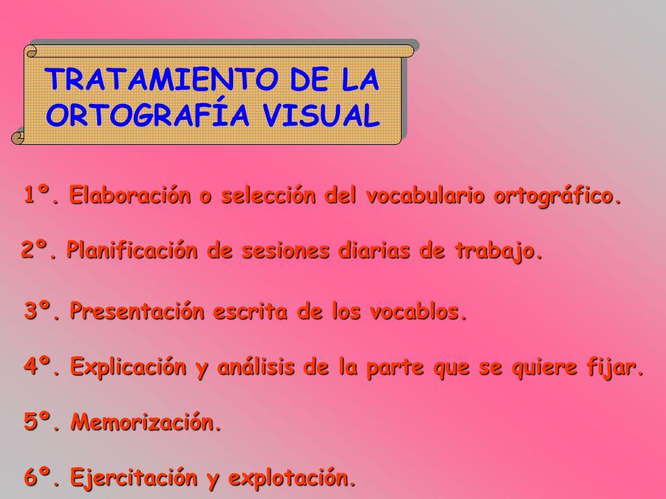 TRATAMIENTO DE LA ORTOGRAFÍA VISUAL