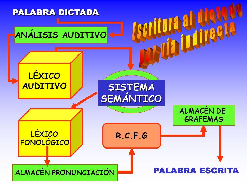 ALMACÉN PRONUNCIACIÓN ALMACÉN PRONUNCIACIÓN