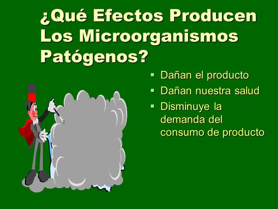 ¿Qué Efectos Producen Los Microorganismos Patógenos