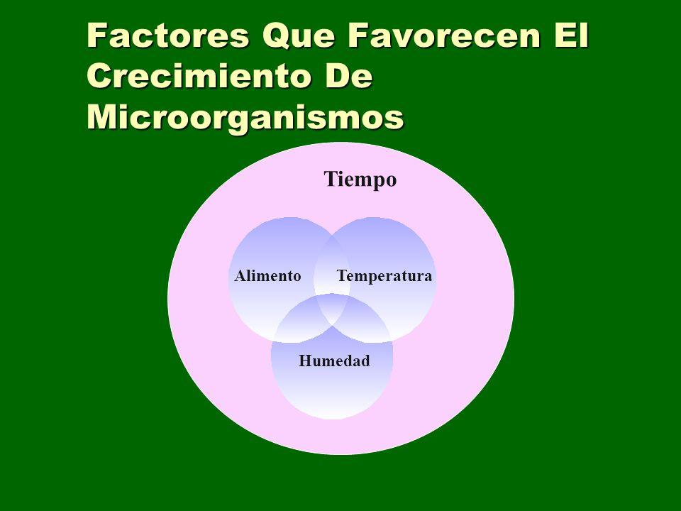 Factores Que Favorecen El Crecimiento De Microorganismos