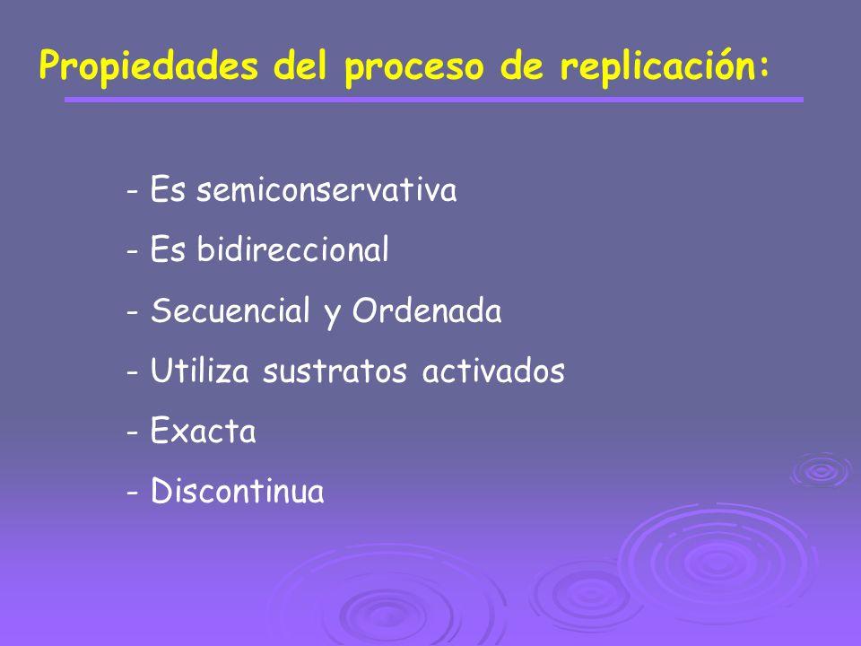 Propiedades del proceso de replicación: