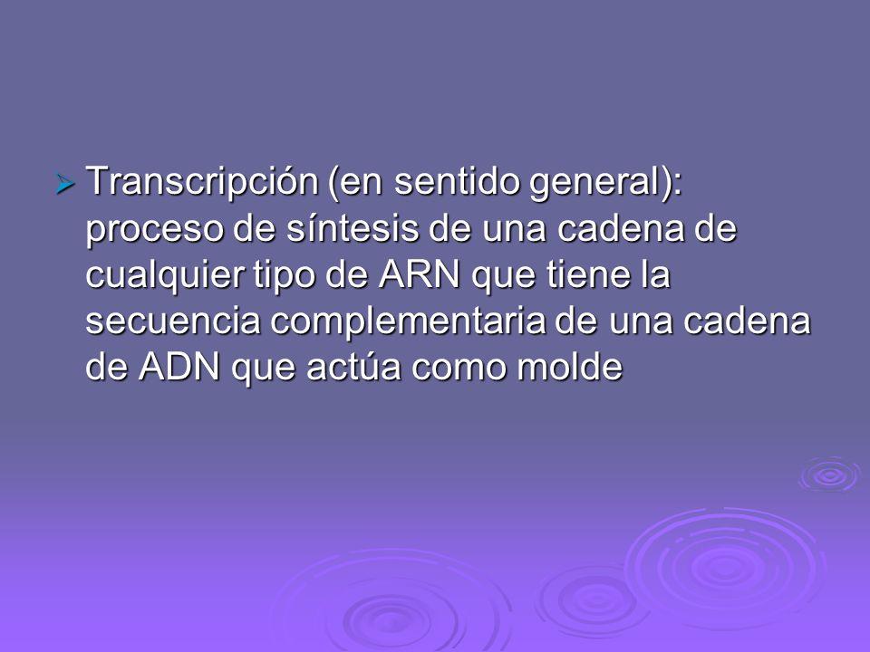 Transcripción (en sentido general): proceso de síntesis de una cadena de cualquier tipo de ARN que tiene la secuencia complementaria de una cadena de ADN que actúa como molde