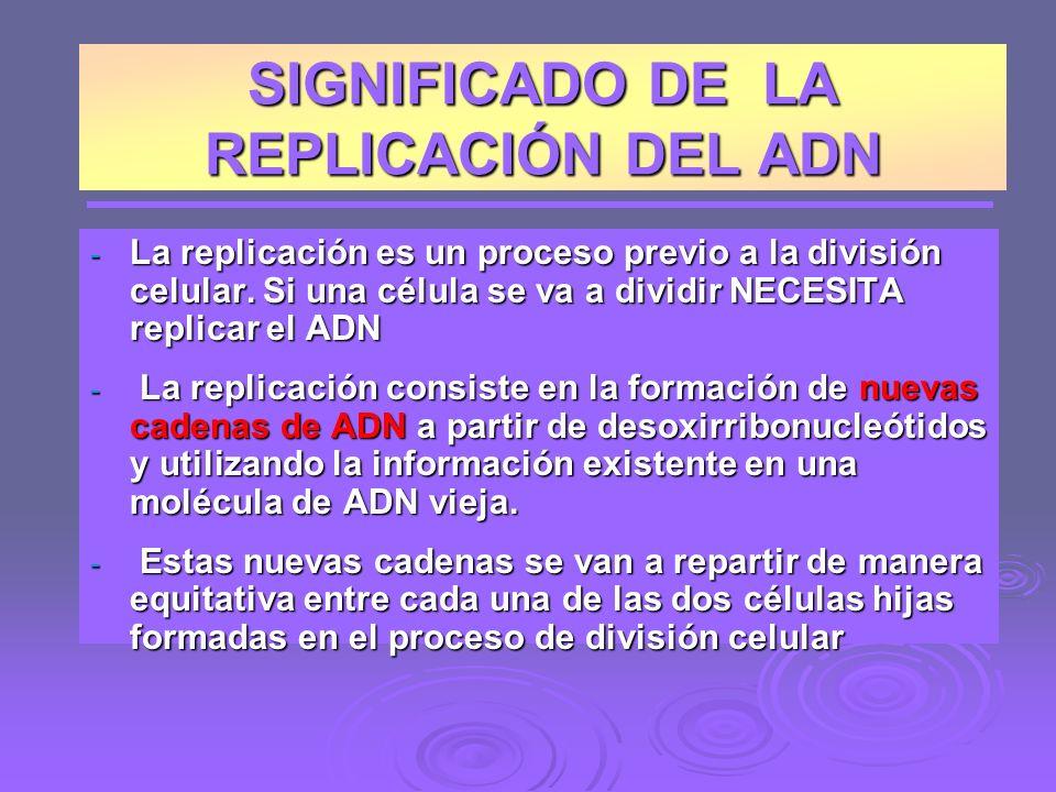 SIGNIFICADO DE LA REPLICACIÓN DEL ADN