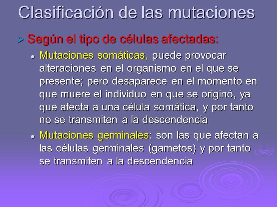 Clasificación de las mutaciones