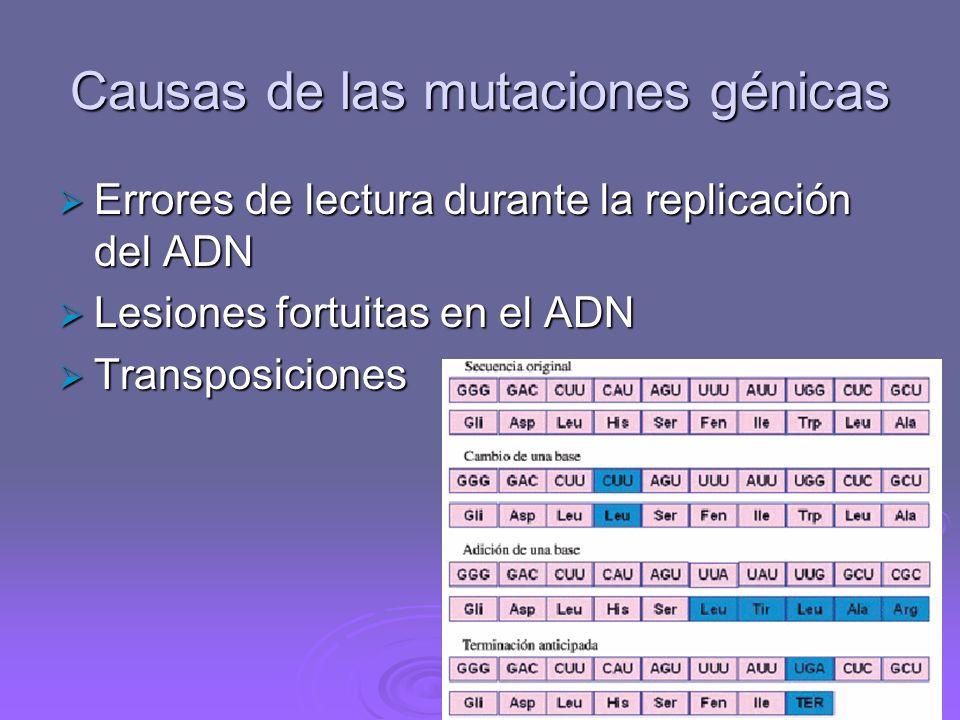 Causas de las mutaciones génicas