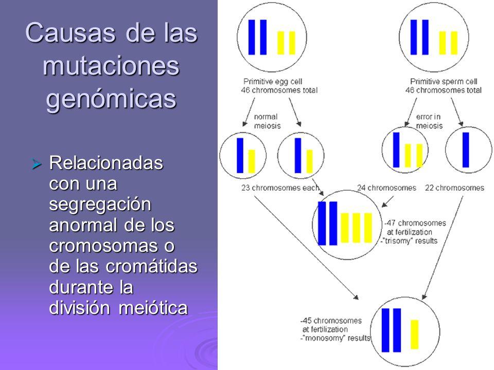 Causas de las mutaciones genómicas