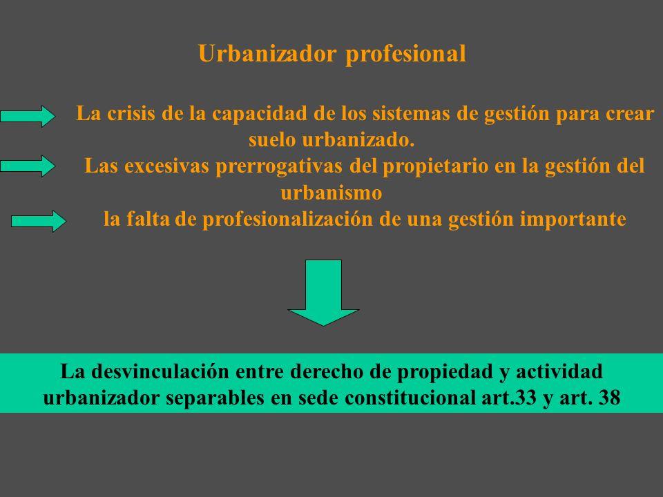Urbanizador profesional
