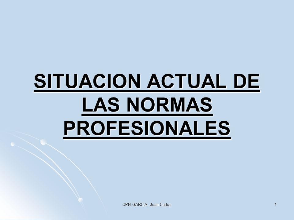 SITUACION ACTUAL DE LAS NORMAS PROFESIONALES