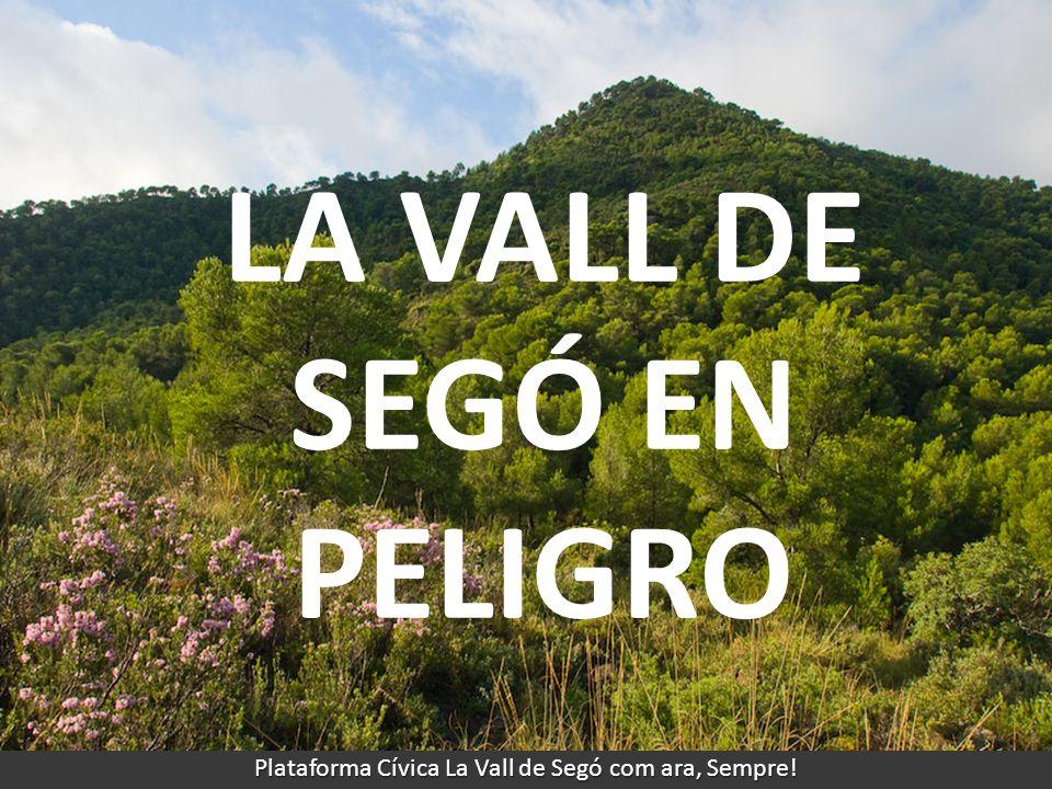 LA VALL DE SEGÓ EN PELIGRO