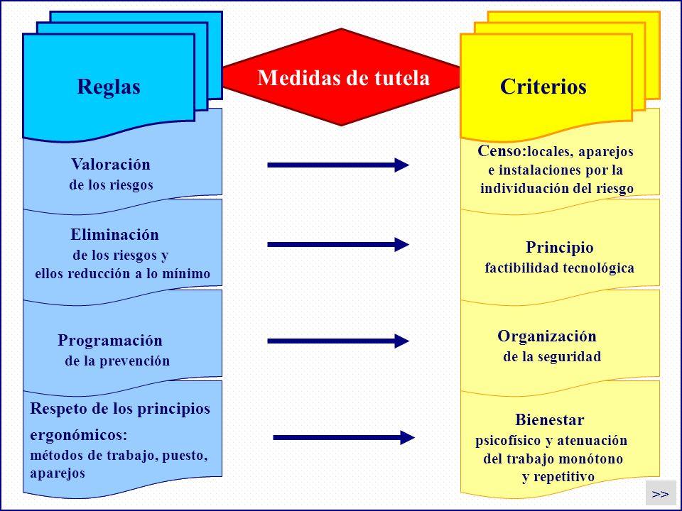Reglas Criterios Medidas de tutela