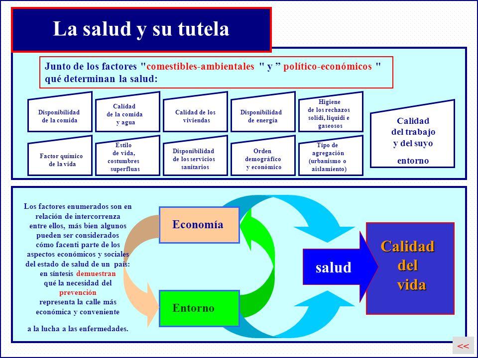 La salud y su tutela Calidad del vida salud Economía Entorno