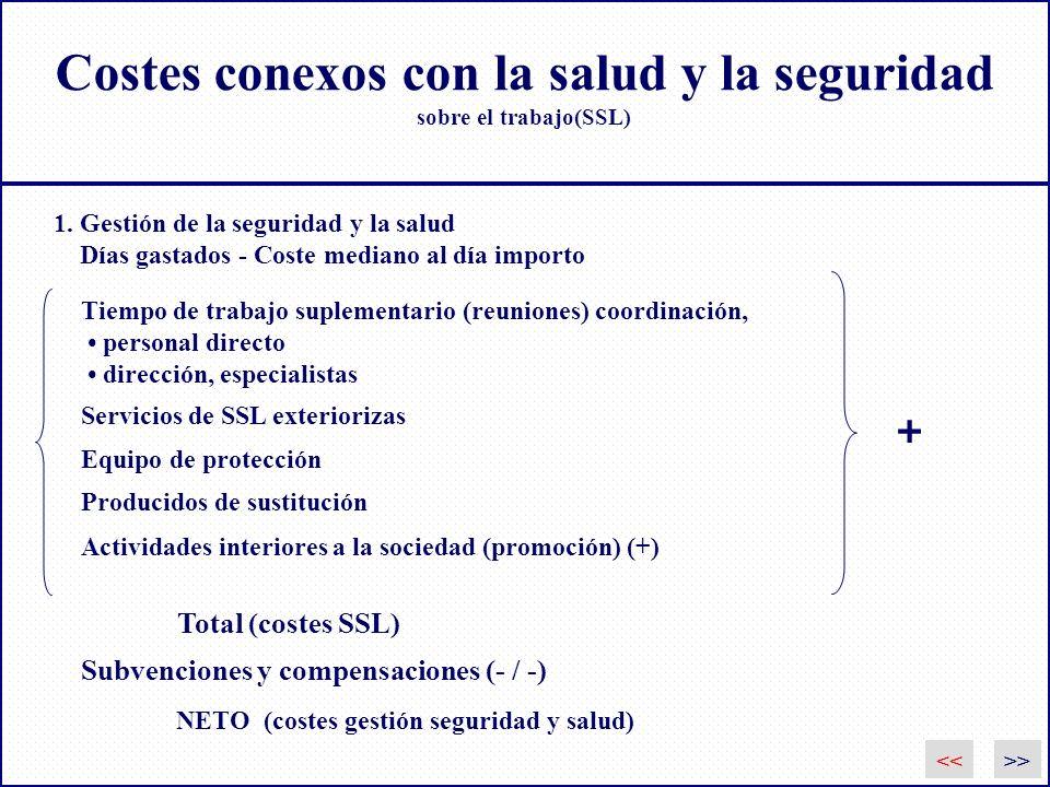 Costes conexos con la salud y la seguridad sobre el trabajo(SSL)